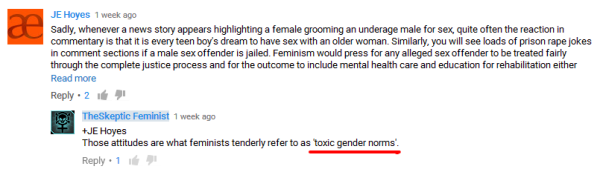 skeptic feminist toxic gender norms